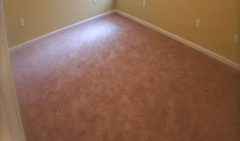 Off Campus Apartment near Temple University for Rent